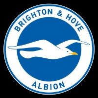 Brighton and Hove Albion F.C.